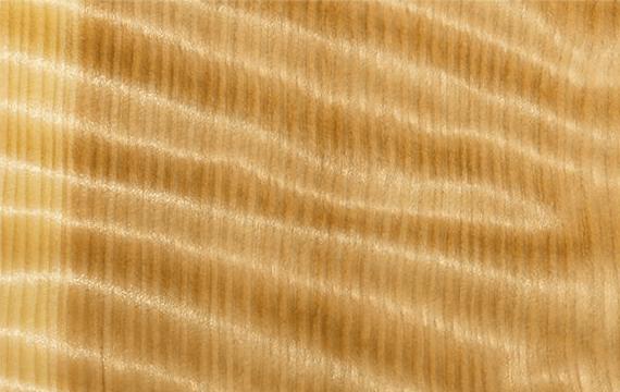 Панель Секвойя